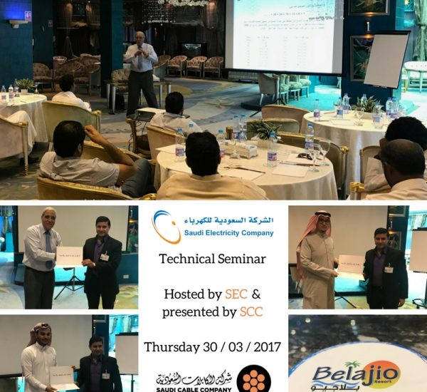 Technical Seminar with SEC